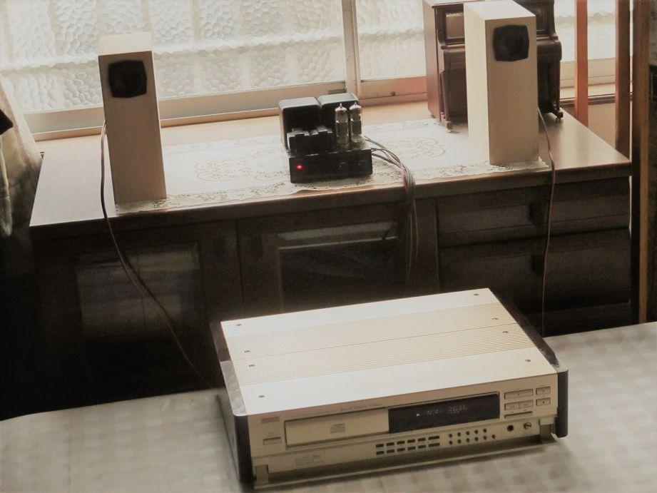 真空管アンプ、QWT型スピーカー、DCD-1650GL
